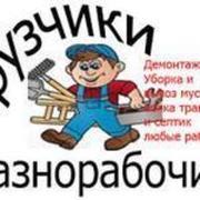 Подсобник,  разнорабочий,  грузчик повременно в Орше